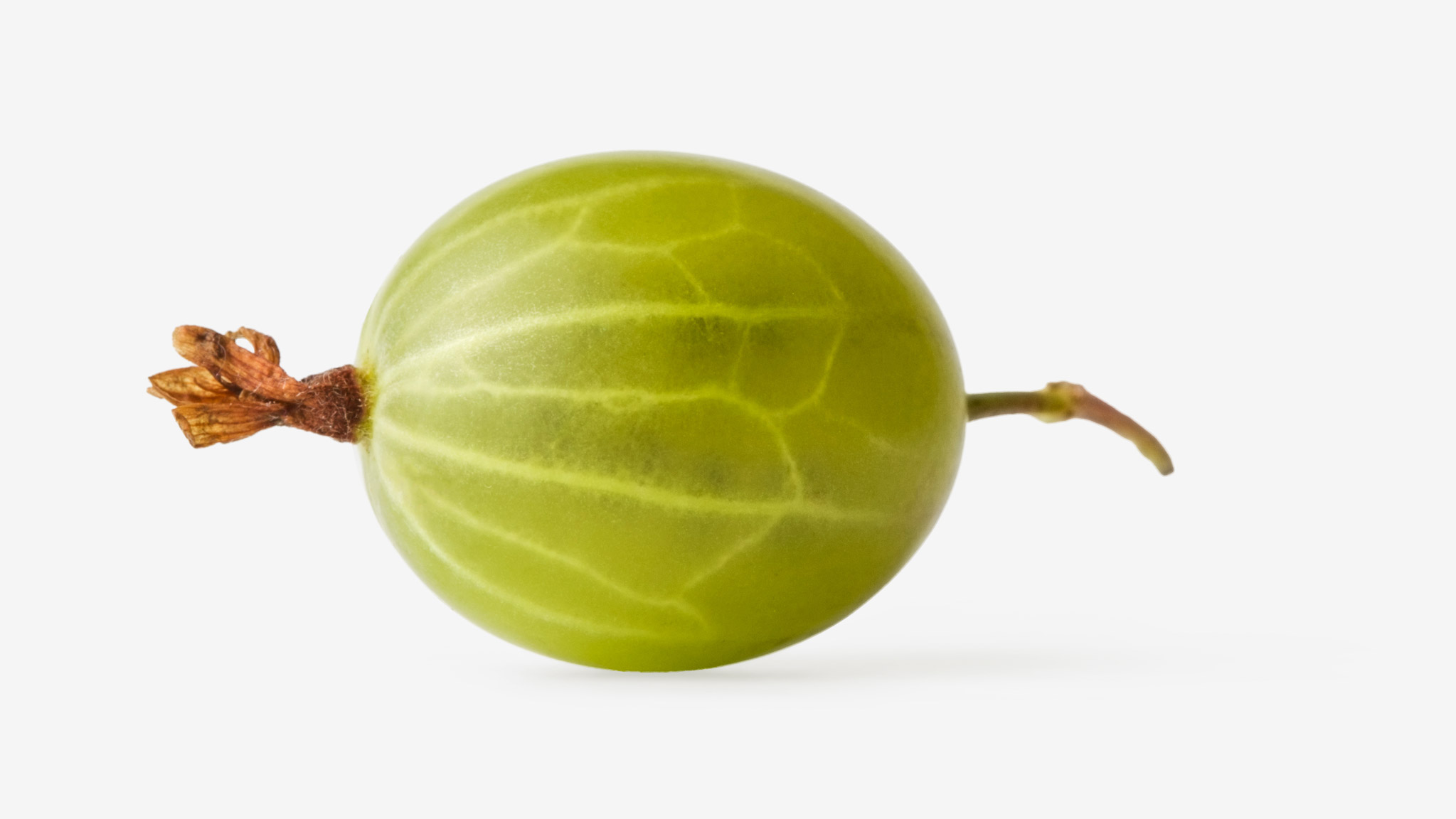 Gooseberry image asset with transparent background