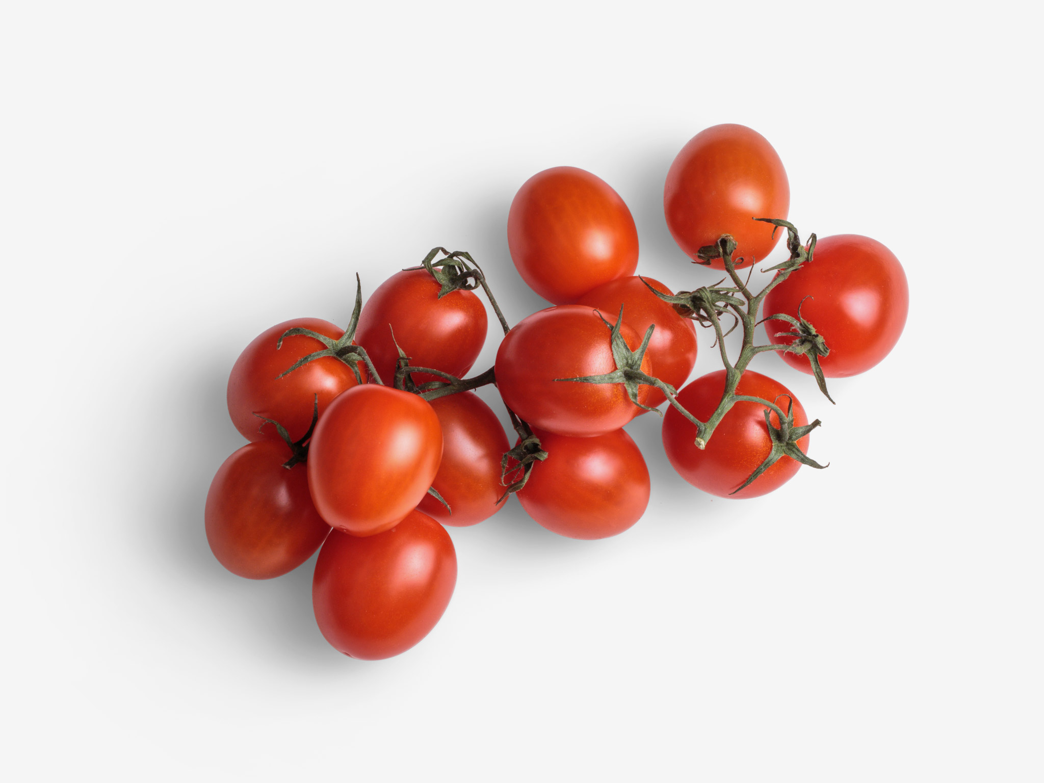 Cherry PSD image with transparent background