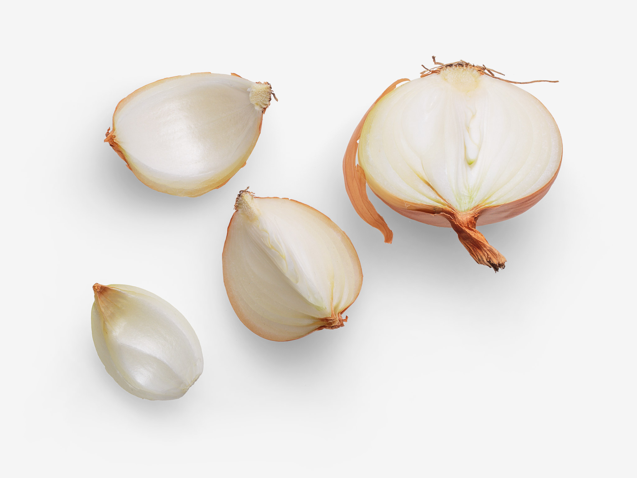 Onion PSD image with transparent background