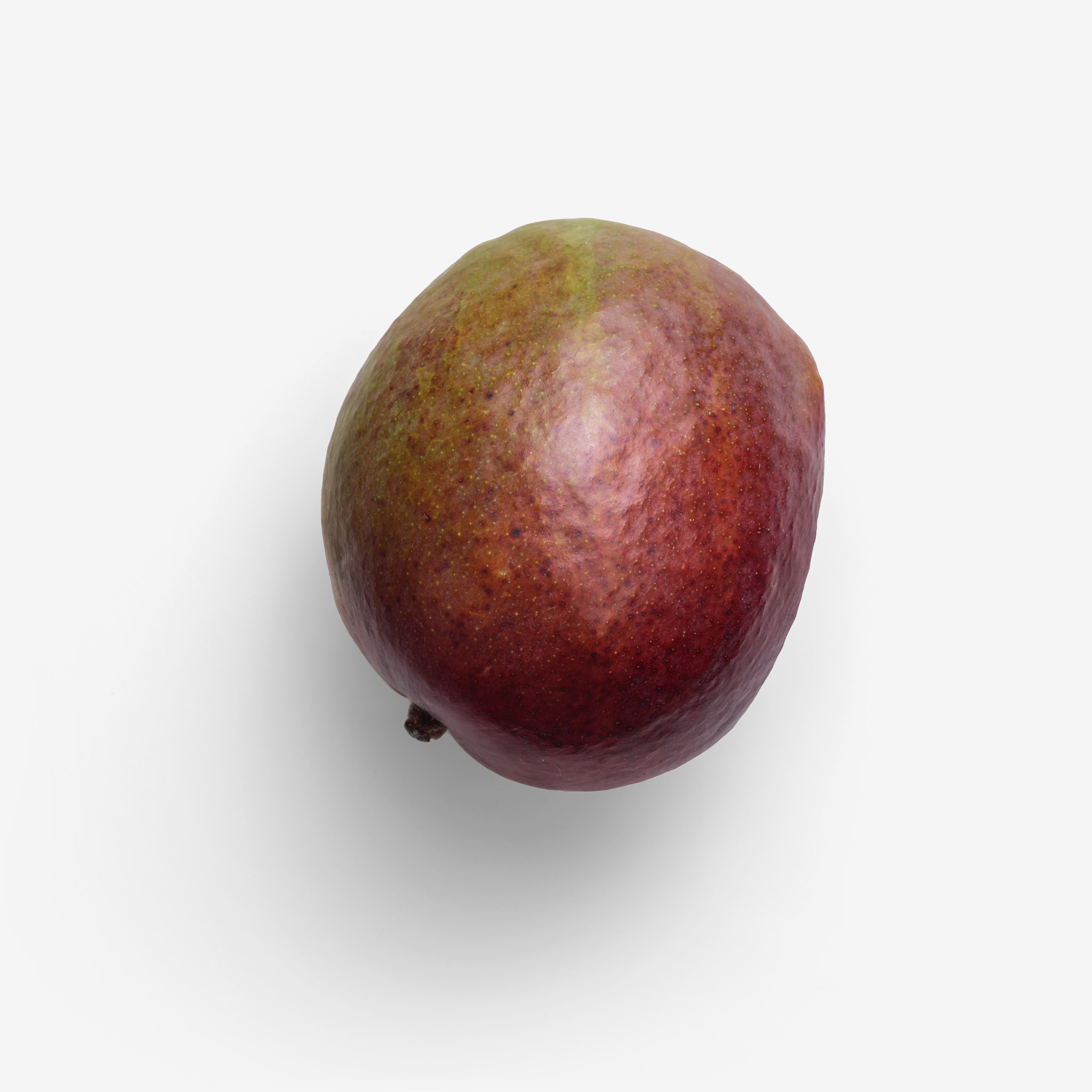 Mango image asset with transparent background