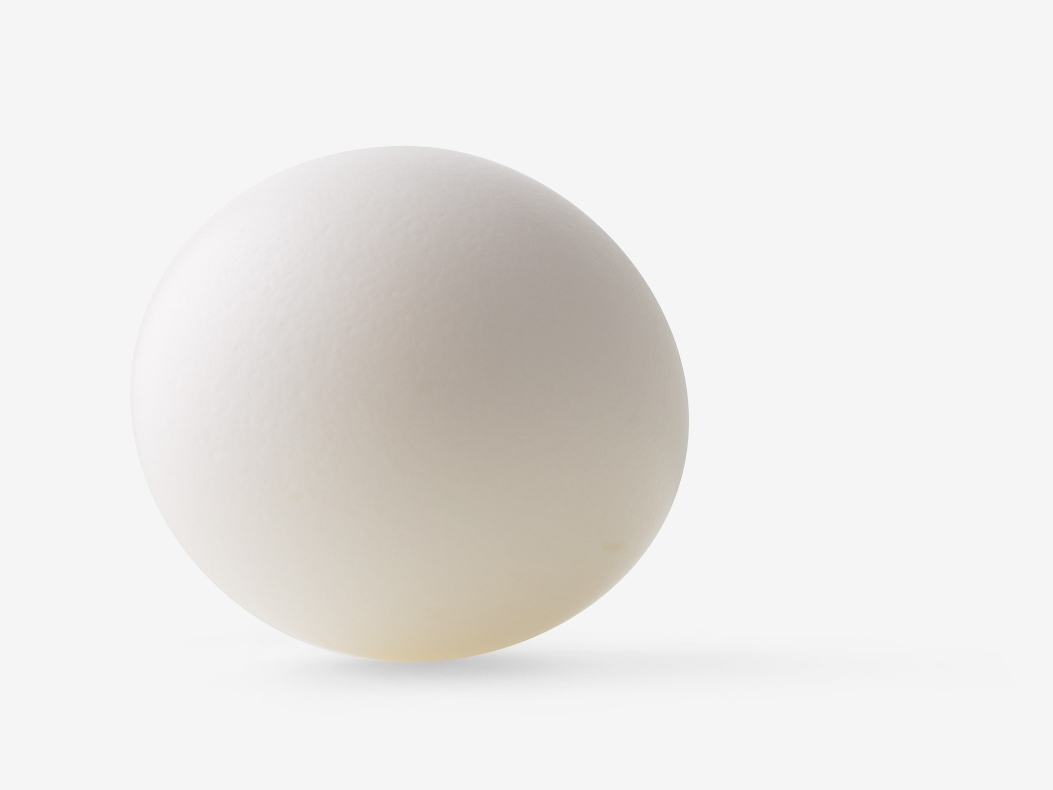 Egg image with transparent background