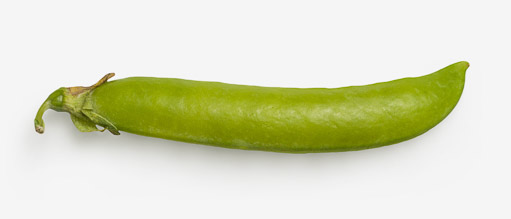 Green Pea PSD image with transparent background