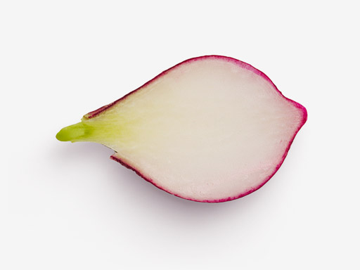 Radish PSD isolated image