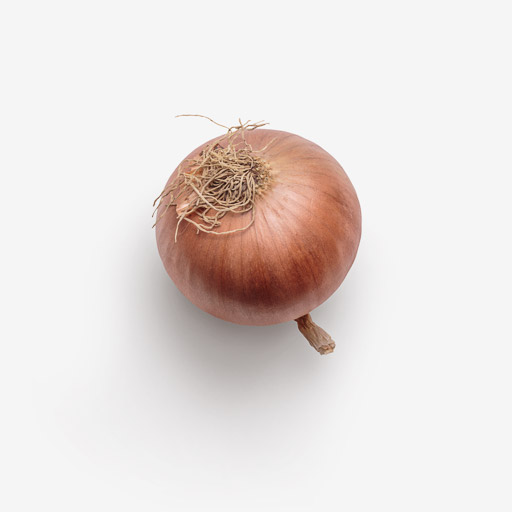 Onion PSD layered image